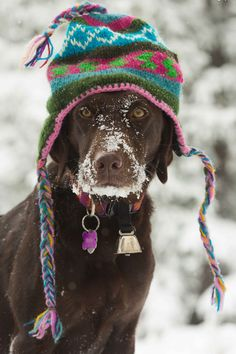 snowin' hard?