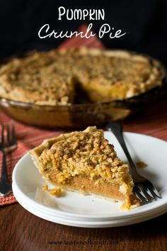 Pumpkin Crumb Pie {Tastes of Lizzy T}  The combination of two of our favorite desserts! http://www.tastesoflizzyt.com/2013/10/22/pumpkin-crumb-pie/