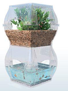 El Futuro de la Comida – The Aqualibrium Garden