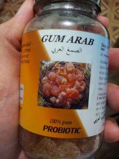 Gam arab digunakan sebagai probiotik?
