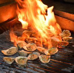 Ariccia Italian Trattoria & Bar Oysters