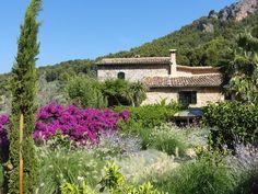 Contemporanium: Mediterranean Garden Design in Mallorca