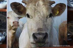 The Charm of Home: Home Sweet Home #74, Make your own cow painting!!!