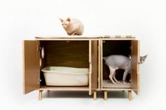 Mid-Century Chic Pet Furniture By Modernist Cat | DigsDigs