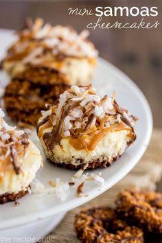 Mini Samoas Cheescakes | www.TheRecipeCritic.com | #Samoas #minicheesecakes #cheesecake