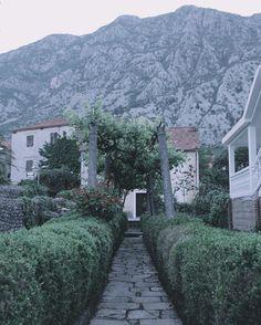 5 утра морской ветер пустые улицы и свободная для мечтаний голова так сегодня я встречал рассвет в Которе. #montenegro #kotor by elivosk