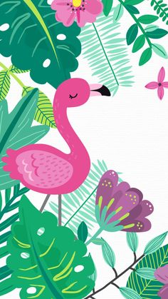 Wallpaper Piercing piercings h&m Flamingo Party, Flamingo Birthday, Flamingo Wallpaper, Summer Wallpaper, Cool Backgrounds For Iphone, Wallpaper Backgrounds, Iphone Hintegründe, Cute Illustration, Flamingo Illustration