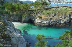 Point Lobos, Carmel, CA One of the best places to see Marine life along the Central CA Coast. Tidepools, Great day hikes & picnic area with amazing sandy beaches. One of the few places you can actually see past the dark blue waters.
