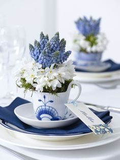 Individual Paperwhites & Grape Hyacinth Centerpieces - it's time for a May DayTea Party!