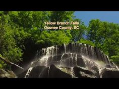 Yellow Branch Falls 1 - YouTube