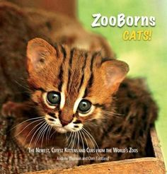 Zooborns Cats: The Newest, Cutest Kittens and Cubs from the World's Zoos