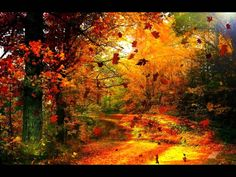 Yves Montand - Les Feuilles Mortes ( Autumn Leaves )