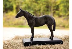 Cast Aluminum Horse Trophy - From Antiquefarmhouse.com - http://www.antiquefarmhouse.com/current-sale-events/equestrian/cast-aluminum-horse-trophy.html