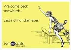 Welcome back snowbirds.. Said no Floridian ever.