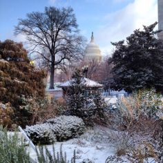 Great shot of the Capitol and snow this morning