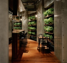 a+.29: COTOTOI, Tokyo Japan. Perfect feeling! #Indoorgardens