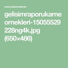 gelisimraporukarneornekleri-15055529228ng4k.jpg (650×486)
