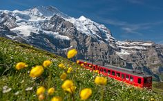 Things not to miss in Switzerland | Photo Gallery | Rough Guides