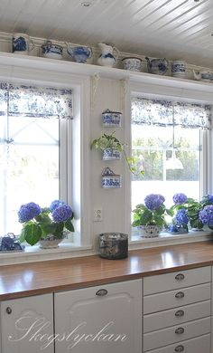 blue and white kitchen: well, if i didn't already have a red and