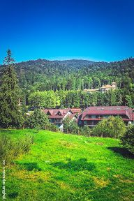 Busteni si Sinaia - 29 & 30 August 2015 - Romulus ANGHEL - Picasa Web Albums 30 August, Picasa Web Albums, Golf Courses, Mountains, Nature, Photos, Travel, Naturaleza, Pictures