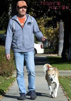 88 Best Celebrity Dog Lovers images   Pets, Celebrities ...