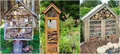 Bug hotels are a brilliant way to attract beneficial insects to your garden. They are fun and easy to make and this total guide reveals how. Garden Bugs, Garden Pests, Garden Care, Bug Hotel, Insect Hotel, Organic Gardening, Gardening Tips, Beneficial Insects, Family Garden