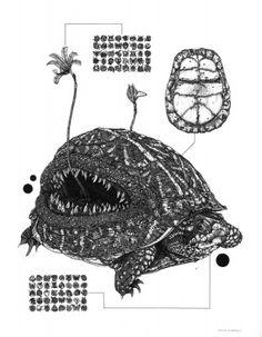 Nicholas Di Genova - Angler Tortoise | Galerie Dukan