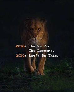 Super quotes about strength lion people 65 Ideas Quotes About New Year, Year Quotes, Girl Quotes, True Quotes, Funny Quotes, Qoutes, Daily Quotes, Hindi Quotes, Woman Quotes
