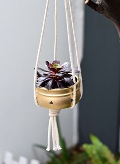 Here we've sprayed our pot gold, added some cute stickers and tied together some rope to create our very own hanging planter.