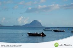 Mauritius, West, Flic en Flac Beach. Mauritius is a tropical island located in the Indian Ocean - a  paradise location inviting to travel to for a memorable unique holiday of a lifetime! // Lagoon, beach, sand, azur blue, turquoise, filao trees, leisure, travel, holiday destination, shops, clubs, restaurants, coast \\ #Mauritius #Travel #Holiday #Vacation #Destination #Tourism #Sightseeing #Places #Kitesurf #Photography #Nature #Life #Wishlist #Dream I ❤ MAURITIUS! ツ