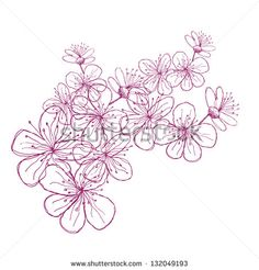 Hand Drawn Cherry Blossoms. EPS 8 vector, grouped for easy editing. No open shapes or paths.