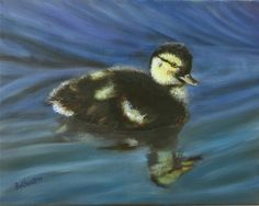 "Duckling on the river, oil on canvas, 11"" x 14"", 2015, in the collection of Jake and Tina Quinn.  Prints available."