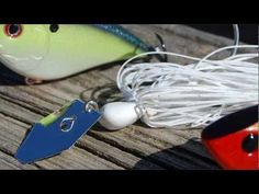 Search Baits for Bass  ||  Though the tips in this video are geared towards search baits for spring and Lake Fork, with a little adjustment they can be applied anytime and anywhere… http://www.docsfishingtips.com/search-baits-for-bass/?utm_campaign=crowdfire&utm_content=crowdfire&utm_medium=social&utm_source=pinterest