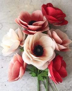 Anemone - Suzonne Stirling's elegant paper flowers provide beauty all year long. Amazing Flowers, My Flower, Flower Art, Beautiful Flowers, Elegant Flowers, All Flowers, Anenome Flower, Anemone Flower Photos, Flower Pictures
