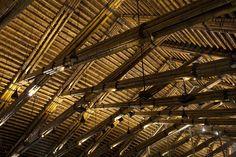 Dai Lai Conference Hall / Vo Trong Nghia Architects © Hiroyuki Oki