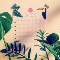 Le calendrier du moi de Juin est disponible sur le Blog =>  http://meandmytriangles.blogspot.fr/2015/05/calendrier-de-juin-2015-printable-inside.html  #calendrier #juin #freeprintable #printable #calendar #june #summer #jungletropicale