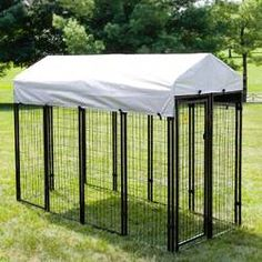 Archie & Oscar™ Abigail Steel Yard Kennel & Reviews | Wayfair Kitten Breeds, Dog Yard, Dog Pen, Pet Resort, Playpen, Pet Safe, Bichon Frise, Puppies For Sale, Large Dogs