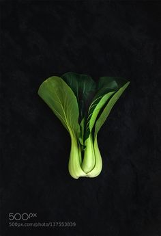 Pic: Pak choi on slate stone black background top view.