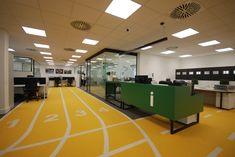 Office designed by Ciaran Adamson Design - Dublin Athletics, Dublin, Ireland, Basketball Court, Design, Irish