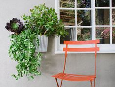 This Living Wall Planter includes a self-watering tank.