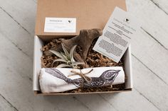 Sprout the gift of giving! Eco-friendly, natural gift boxes for various occasions. Every box includes a succulent or air plant and up to two personal gifts. Send a warm welcome box to a new home owner! New Homeowner, New Home Gifts, Air Plants, Gift Boxes, Giving, Sprouts, Personalized Gifts, Eco Friendly, New Homes