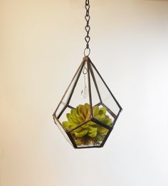 Terrarium, Small Hanging Terrarium, Glass Terrarium, Geometric Teardrop Shape Plant holder With chain and crystal. Made to Order. by jacquiesummer on Etsy https://www.etsy.com/listing/209129476/terrarium-small-hanging-terrarium-glass