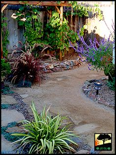 Lawn conversion to pavers and decomposed granite. Garden Yard Ideas, Garden Spaces, Indoor Garden, Outdoor Gardens, Patio Ideas, Front Yard Decor, Front Yard Design, Gravel Patio, Gravel Garden