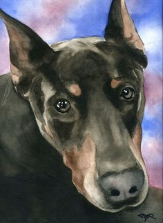 BLUE DOBERMAN PINSCHER Dog Watercolor Signed Fine Art Print by Artist DJ Rogers on Etsy, $12.50