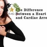 Cardiac Arrest vs Heart Attack: The Difference and What to Do on Both Situations   It is quite common for people to think that cardiac arrest and heart attack are the same. This is a mistake that has to be corrected. These two may have..  The post  Cardiac Arrest vs Heart Attack: The Difference and What to Do on Both Situations  appeared first on  Diva lives .  #Health #Food  #News  #cardiacarrest  #healthadvise  #healthytip  #heartattack  #heatlh