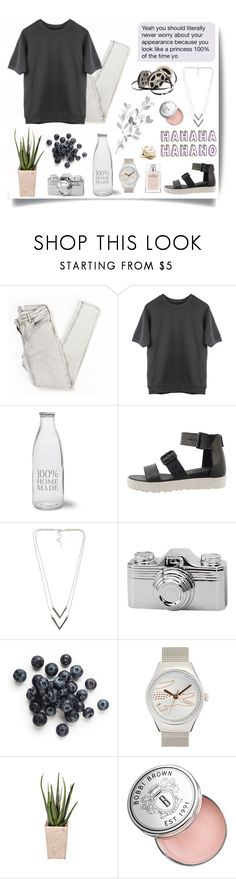 """""""Back to December"""" by pamelagonzales ❤ liked on Polyvore featuring Garden Trading, NLY Accessories, Torre & Tagus, Lacoste, PLANT, Lauren Ralph Lauren, Bobbi Brown Cosmetics, Narciso Rodriguez and CO"""