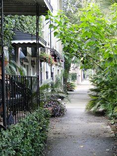 Rue de Savannah