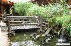 Decks, Garden Bridge, Outdoor Structures, Shopping, Wooden Truck, Carp, Wooden Walkways, Rock Waterfall, Garden Toys