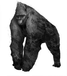 Tribal Gorillah, Alex Figini on ArtStation at http://www.artstation.com/artwork/tribal-gorillah