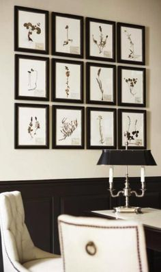 Baker Ritz dining chairs, ivory walls, black wainscoting and botanical art gallery black frames